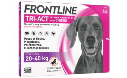 anti-puces chien frontline tri-act