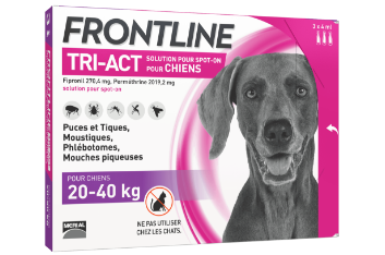 frontline tri-act anti-puces chien