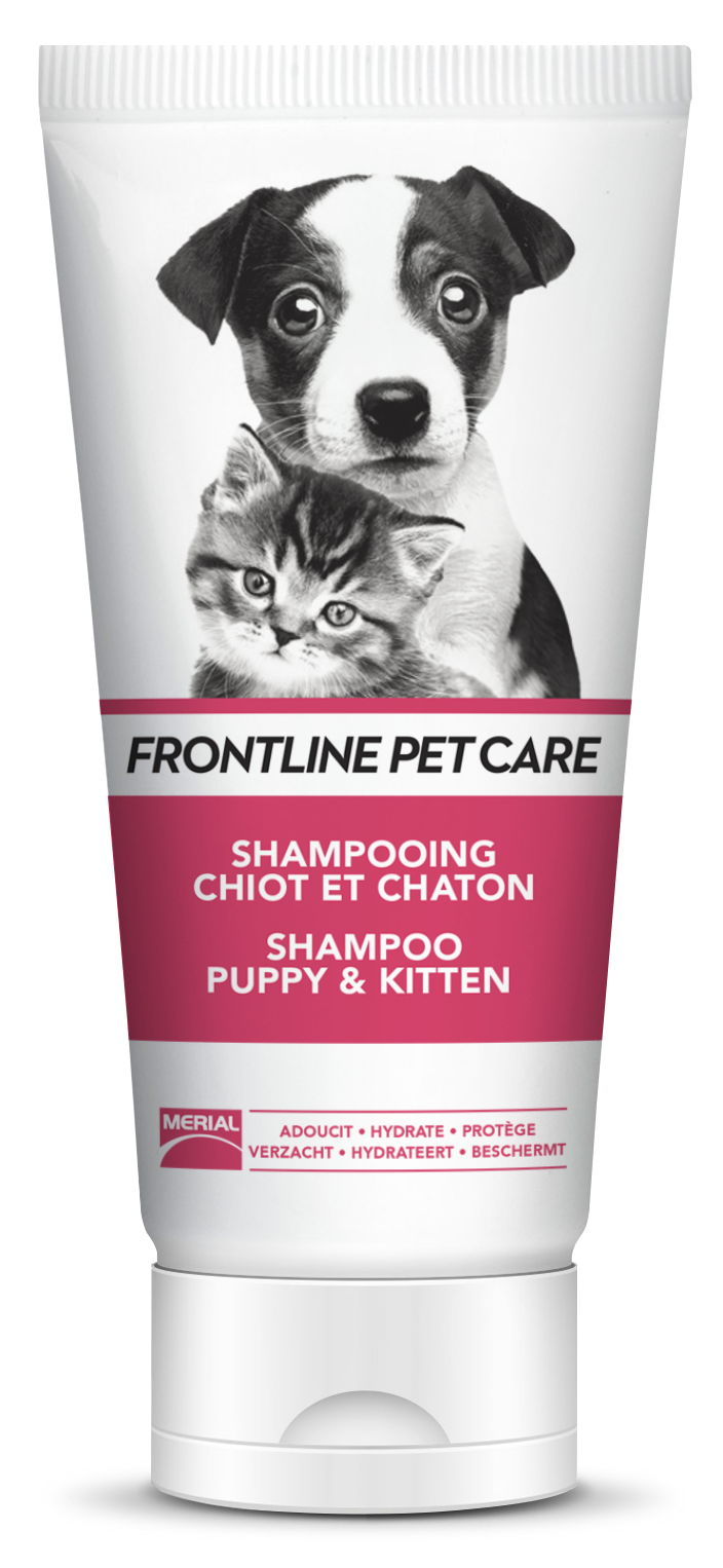 shampoing chaton chiot frontline pet care