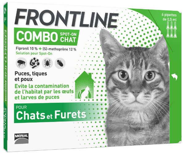 frontline combo anti puces chat