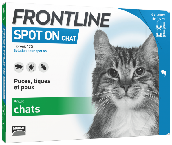 frontline spot on anti puces chat